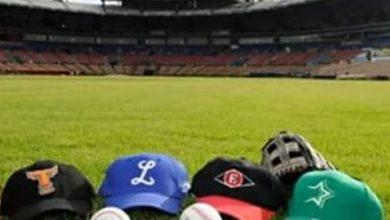Photo of Salud Pública da aval a Liga Dominicana de Béisbol para juegos invernales