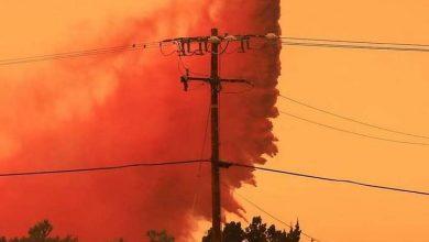 Photo of Incendios forestales avanzan en Juniper Hills, California.